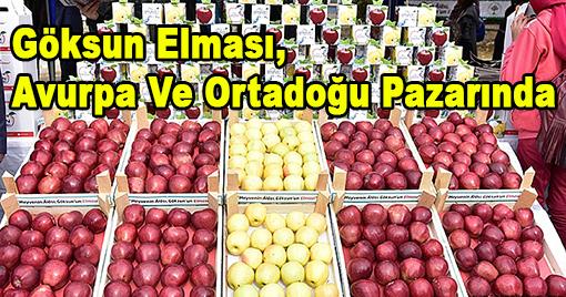 Göksun Elması, Avrupa Ve Ortadoğu Pazarında