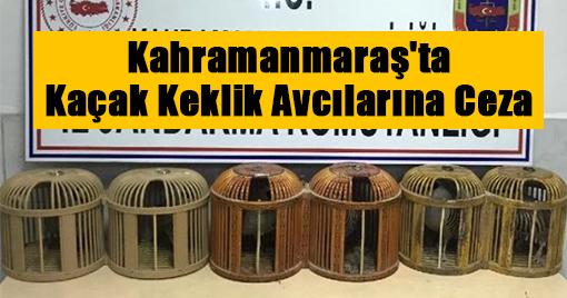 Kahramanmaraş'ta Kaçak Keklik Avcılarına Ceza