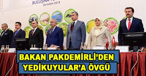 BAKAN PAKDEMİRLİ'DEN YEDİKUYULAR'A ÖVGÜ